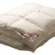 Пухово-перьевые одеяла фото