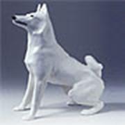 Фарфоровые Собаки фото