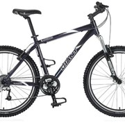 Велосипед горный Iguana фото