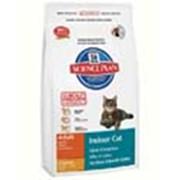 Корм для котов Hill's Science Plan Indoor для кошек живущих дома, с курицей 300 гр фото