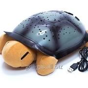 Музыкальная черепашка ночник-проектор фото