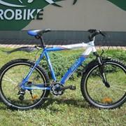 Велосипед горный Eurobike Scorpio 26 фото