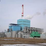 Целлюлоза, промышленные технологические линии для производства целлюлозы из соломы под заказ из Китая фото