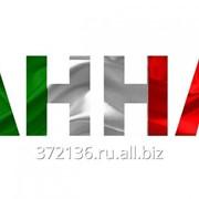 Частный устный и письменный переводчик итальянского языка фото