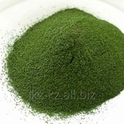 Услуга выпуск кормового белково-витаминного концентрата из культивируемой микроводоросли Хлореллы фото