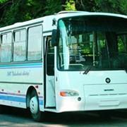 Автобус заказ паз-4230 фото