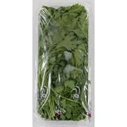 Петрушка свежая (герметичная упаковка) 250 г фото