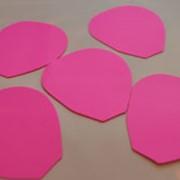 Лепестки розовые фото
