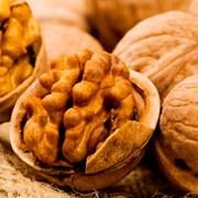 Переработка и реализация орехов, опт фото