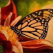 Картина Бабочка фото