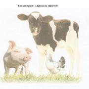 Концентрат для изготовления заменителей молока телятам Агромилк ЗЦМ 60 фото