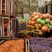 Транспортировка сельхозпродукции фото