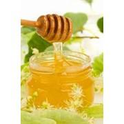 Мёд липовый фото