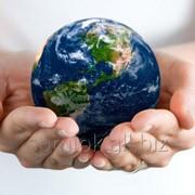 Дистанционные курсы повышения квалификации Охрана окружающей среды фото
