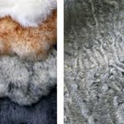 Переработка мехового сырья фото