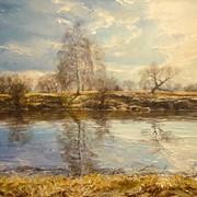 Картина река Омка фото