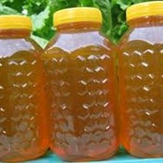Мед в сотах, Пчелиный мёд фото