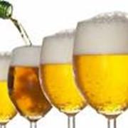 Доставка пива и пивных закусок по Чернигову. фото