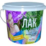 Лак Alina Paint Akrila матовый 1кг фото