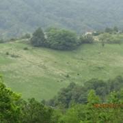 Земельный участок (Н. Хобза) фото