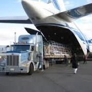 Перевозка груза воздушным транспортом фото