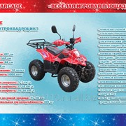 Электроквадроцикл модель 1000E фото