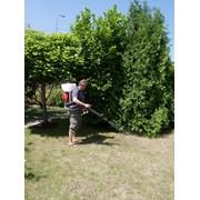 Защита растений, газона от перегрева фото