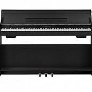 WK-310 Цифровое пианино, со стойкой, черное, Nux Cherub фото