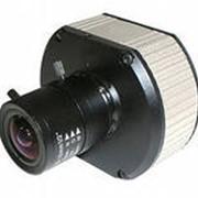 Видеокамеры систем охранного видеонаблюдения IP - камеры Arecont Vision фото