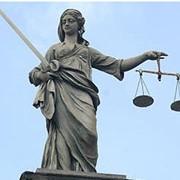 Гражданские правоотношения (гражданские споры): фото