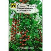 Семена черри-томата Черриколло F1 фото