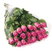 Букет из розовых роз фото