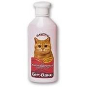 Шампунь БиоВакс для короткошерстных кошек, 355 мл фото