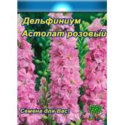 Цветы Дельфиниум многолетний Астолат(0,1) фото