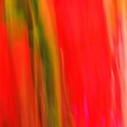Добавки к краске для ротогравюрной и флексографической печати фото