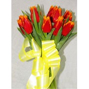 Букеты из тюльпанов,Букеты и композиции из живых цветов,Цветы, флористика фото