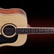 Гитара акустическая Washburn D10S фото