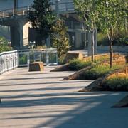 Ландшафтный дизайн городских территорий фото