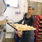 Рабочий в пекарню в Польшу. Работа за границей. фото