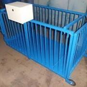 Весы для взвешивания животных до 300/500 кг. фото