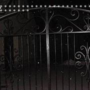 Заборы кованые, с коваными элементами фото
