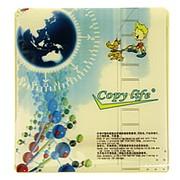 Конверт для Оптического диска CD-R фото