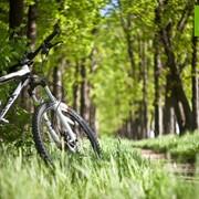 Тематические экскурсии на велосипедах. Вело экскурсии, познавательные поездки. Красоты родного края. фото