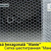 "PLASA METALICA HEXAGONALA ""MANIE"",СЕТКА ШЕСТИГРАННАЯ ""МАНЬЕ"" фото"