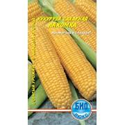 Семена Кукуруза сахарная Лакомка (5гр.) фото