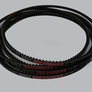 Ремень клиновой XPZ 1237 Lw фото