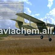 Проведение воздушной разведки лесных и горным массивов. фото