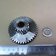 1183.110 Средняя шестерня, для промышленной мясорубки FAMA TS22 (Д-70,4/32мм) фото