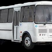 Пассажирские перевозки автобусом ПАЗ (ПАЗ-4234) фото