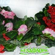 """Цветок искусственный """"Пеларгония свисающая"""" микс K019 фото"""